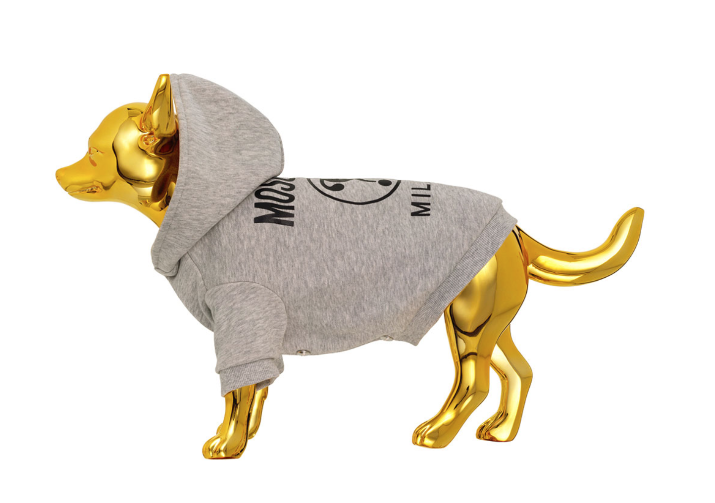 moschino dog jumper