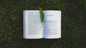 Book with leaf